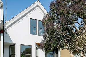 Big upgrades, innovative landscaping in Noe Valley remodel - Photo