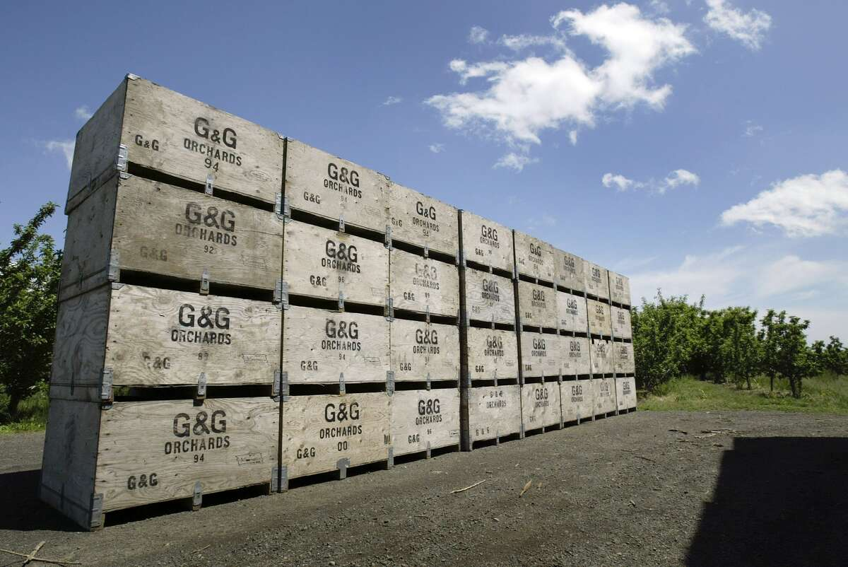 2. Whatever they pluck, knit, weld or dig up is either sold in Seattle or goes through Seattle. Photo caption: Apple crates are stacked, ready for the September harvest, at G&G Orchards May 23, 2006 near Yakima, Washington. (Photo by Jeff T. Green/Getty Images)