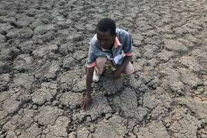 Drought-stricken Zimbabwe declares state of disaster - Photo