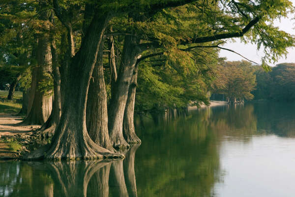 'Frio River at Garner State Park, TX in early morning light.'