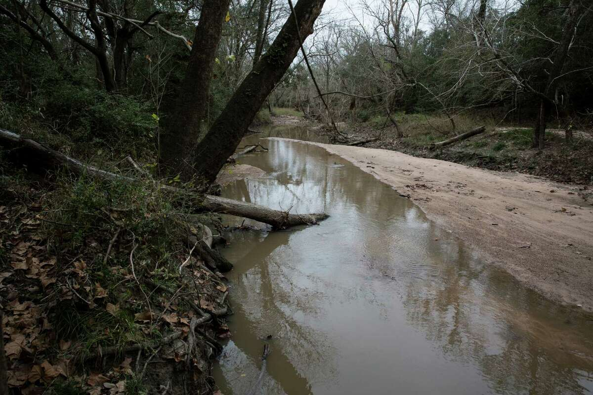 The creek runs between Dorothy Simons' family ranch and Arenosa Creek Ranch, where the sewage sludge is spread.