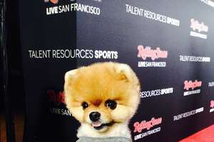 Rolling Stone party gears up with Elle King and JiffPom - Photo
