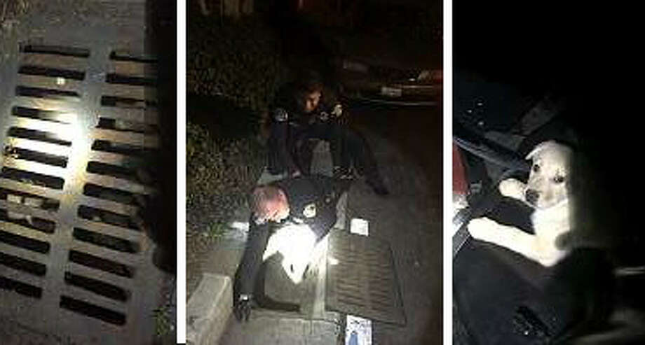 San Jose police officers rescued a puppy that was trapped in a storm drain.