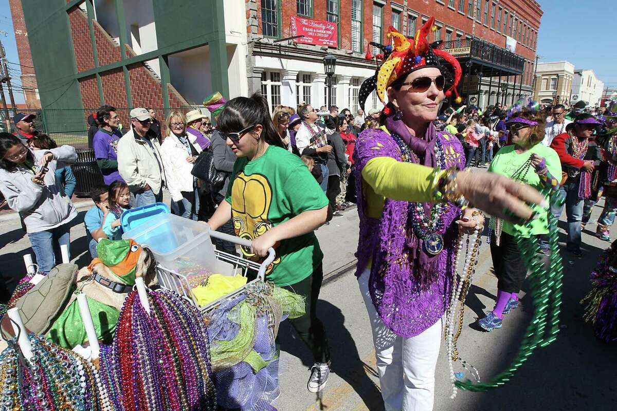 People parade their dogs and animals on Sunday , February 7, 2016 in the Barkus Parade on the Strand in Galveston, Texas.