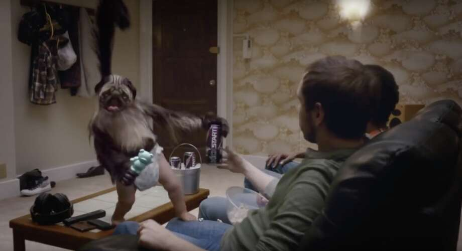 Off the recent fame from its Doritos Super Bowl commercial, Puppy Monkey Baby is the latest famous monkey to draw headlines and a bit of confusion. Continue on to see the most recognizable monkeys—and other primates, of course—to make their place in pop culture.