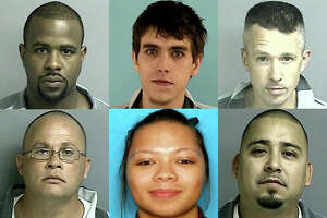 The 'most wanted' fugitives in the suburbs - Photo