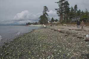 Filming the shores of Boundary Bay, British Columbia - Photo
