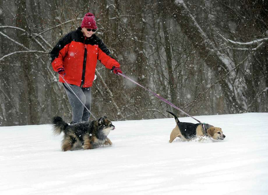 Susan Taylor walks her dogs in the snow on Scuppo Road in Danbury Monday, February 8, 2016. Photo: Carol Kaliff, Hearst Connecticut Media / The News-Times