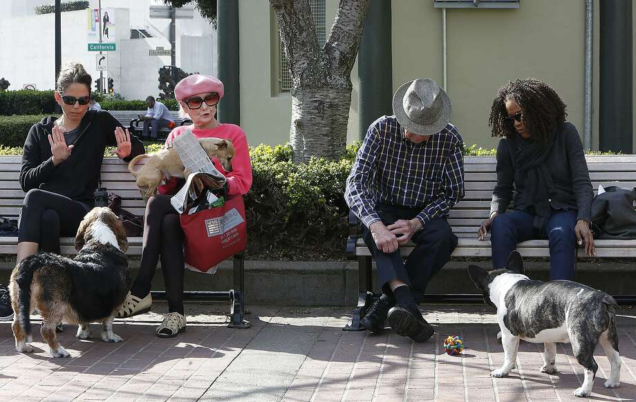 Paula West (right) visits with neighbors while walking her dog Satchmo in sunny Huntington Park in San Francisco, California, on Tuesday,  February 9, 2016. Photo: Liz Hafalia, The Chronicle
