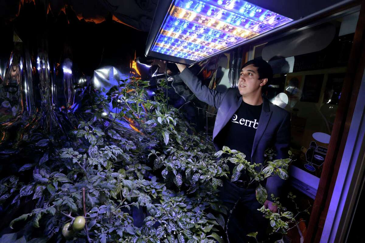 Jonathan Villagomez, president of Errba, demonstrates the various color spectrums produced by the Errba Spectrum premium LED grow light panels on display at Ultimate Hydroponic Garden Supply Friday, Jan. 29, 2016, in Houston, Texas. ( Gary Coronado / Houston Chronicle )
