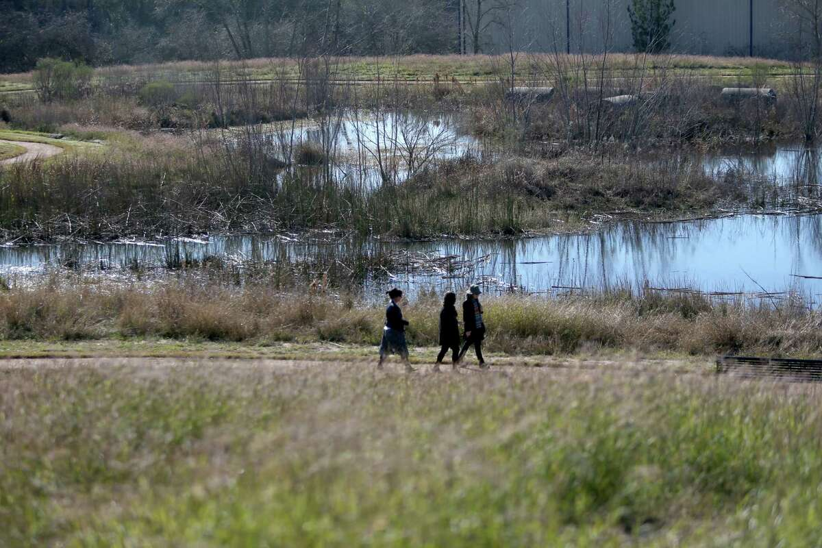 Walking trails at Buffalo Bend Nature Park Friday, Feb. 5, 2016, in Houston, Texas. The park's grand opening is Wednesday, Feb. 10, 2016. The park's wetlands is set up where water will flow from a cistern through a man made wetlands area eventually into the Buffalo Bayou. ( Gary Coronado / Houston Chronicle )