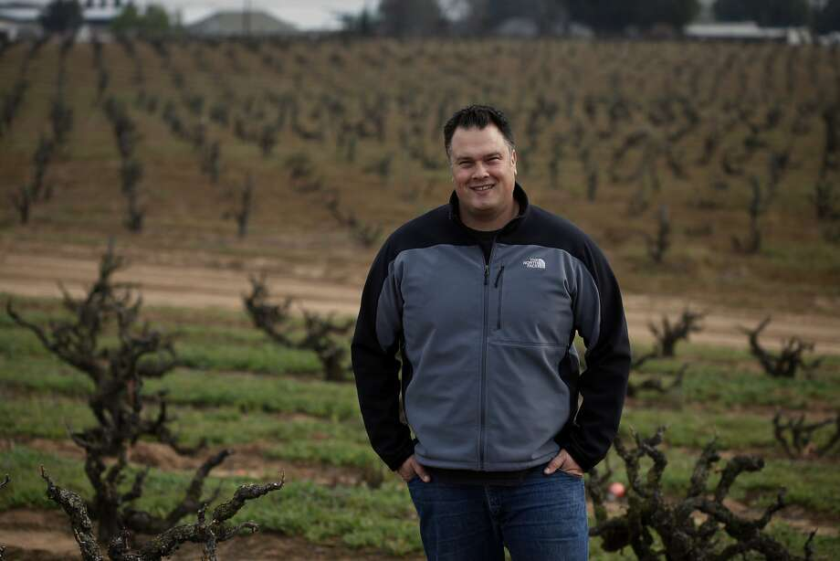 """Tegan Passalacqua makes wine from old vines for Turley Wine Cellars and Sandlands: """"I don't know if we can say that old vines are better, but I think they're more stable."""" Photo: Lacy Atkins, The Chronicle"""
