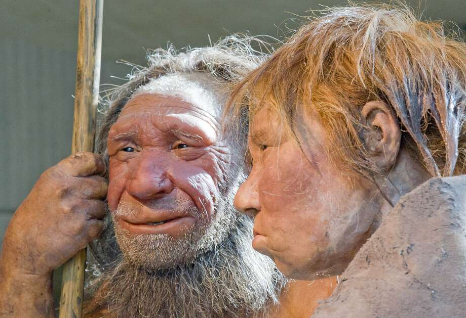 Reconstructions of a Neanderthal man (left) and woman in Mettmann, Germany. Their DNA may give insights into the roots of some diseases. Photo: Martin Meissner, Associated Press