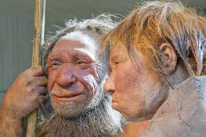 Neanderthal DNA may influence modern depression risk, study finds - Photo