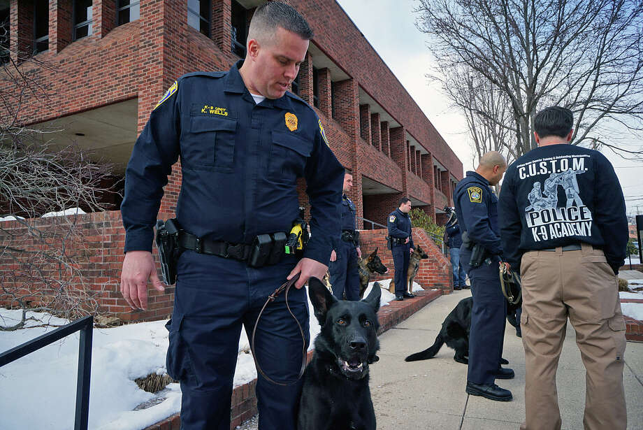 Officer Kevin Wells and his new canine partner, Jagger, following a graduation ceremony Thursday. Photo: Genevieve Reilly / Hearst Connecticut Media / Fairfield Citizen