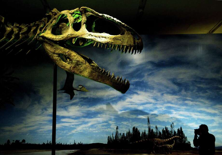 """FILE - In this June 20, 2012 file photo, a man photographs the prehistoric dinosaur called Giganotosaurus, part of the exhibit called """"Ultimate Dinosaurs: Giants from Gondwana,"""" at the Royal Ontario Museum in Toronto. Toronto's attractions are getting an extra dose of attention because the city is hosting the 2016 NBA All-Star game.  (Nathan Denette/The Canadian Press via AP)  ORG XMIT: MER2016020318111983 Photo: Nathan Denette / The Canadian Press"""