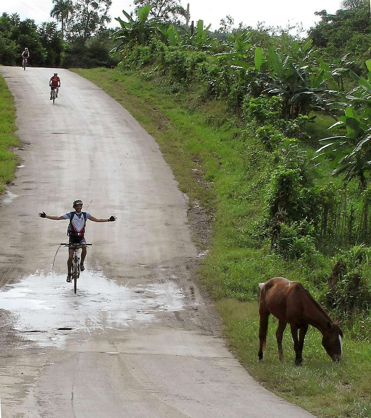 Road hazard, bicycling outside Viñales, Cuba.