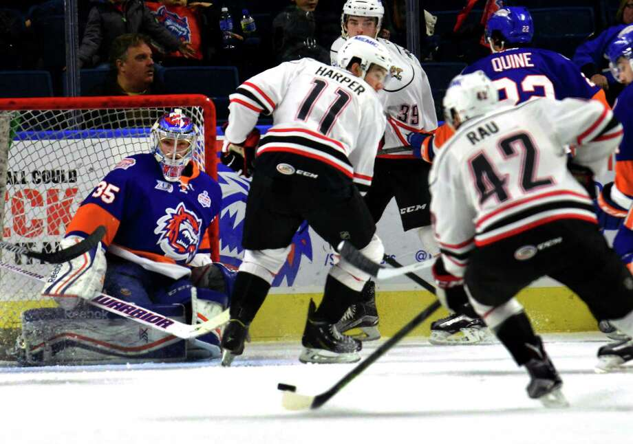 ECHL: Competing And Confident, Goalie Williams Returns To Sound Tigers