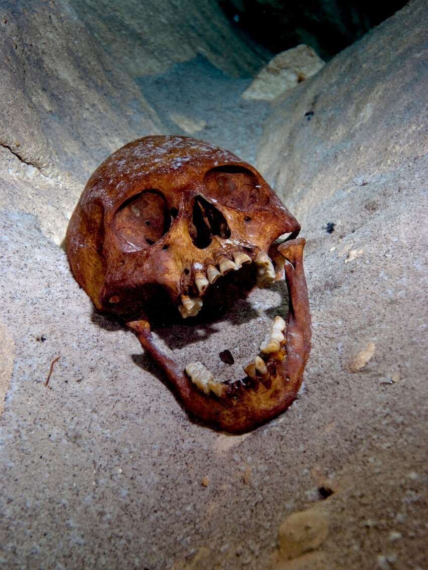 An ancient skull resting on the sandy bed of a cenote once used by the Maya, in Yucatan, Mexico.