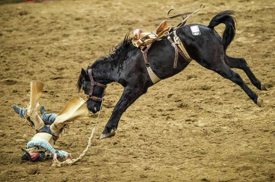 Andy Reed is thrown from his horse as he rides saddle bronc during the San Antonio Stock Show and Rodeo on Friday, February 12, 2016 at the AT&T Center. Photo: Matthew Busch, For San Antonio Express-News / © Matthew Busch