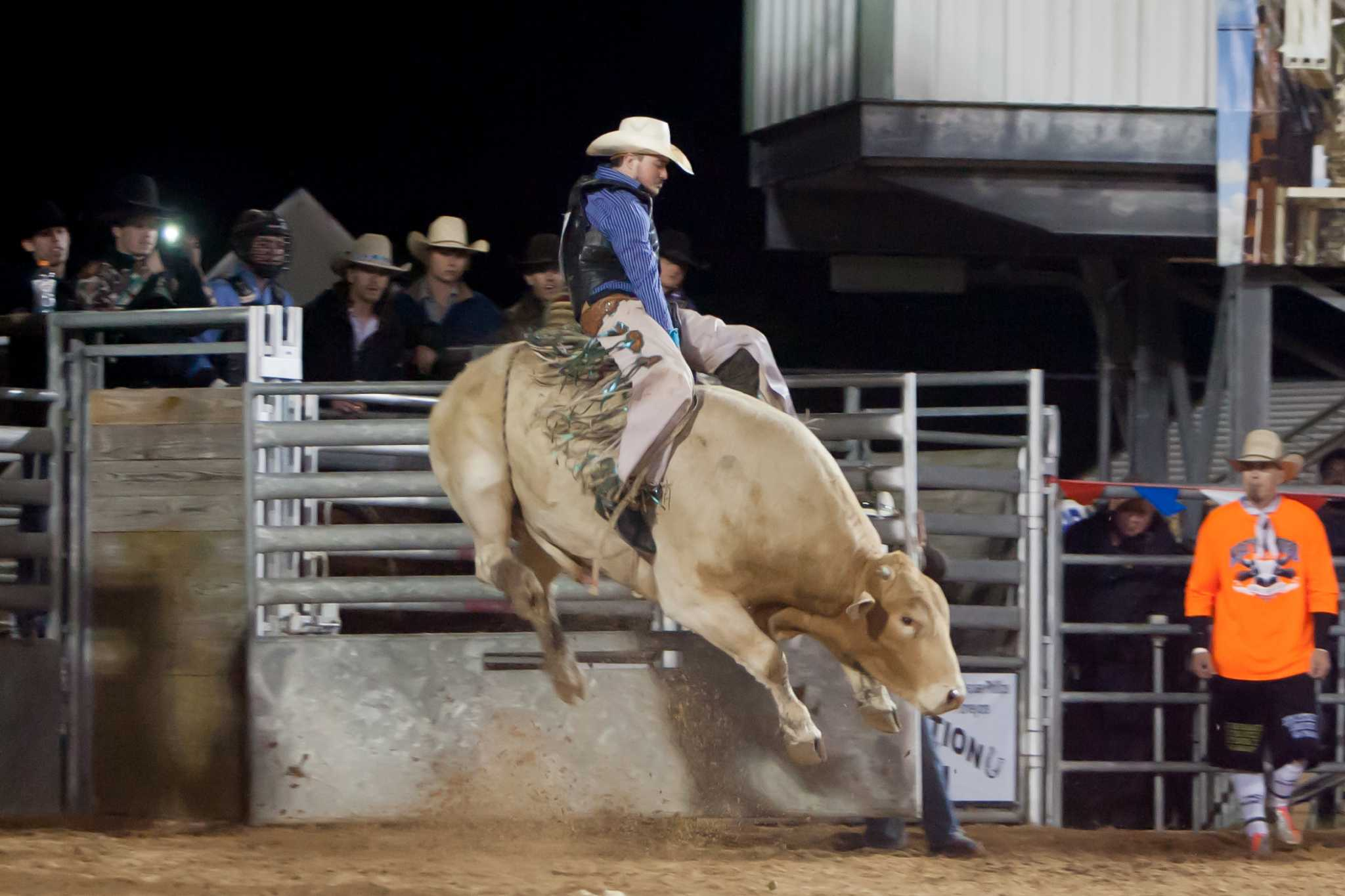 Jaguar Houston Central >> FFA Livestock Show and Rodeo still rooted deep in Katy community - Houston Chronicle