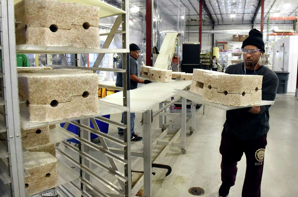Machine operator Lance Tucker, right, carries protective packaging material, that's made from mushrooms, on Tuesday, Feb. 16, 2016, at Ecovative Design in Troy, N.Y. (Cindy Schultz / Times Union)