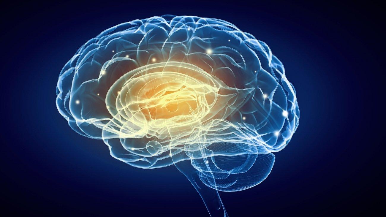 Dopamine brain food supplement image 5