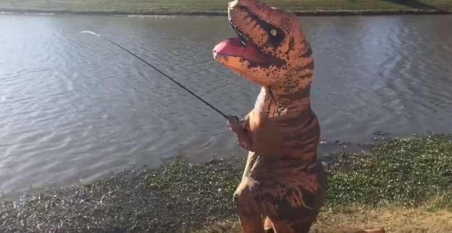 Houston 39 s 39 kyle the fish whisperer 39 dons a dinosaur for The fish whisperer
