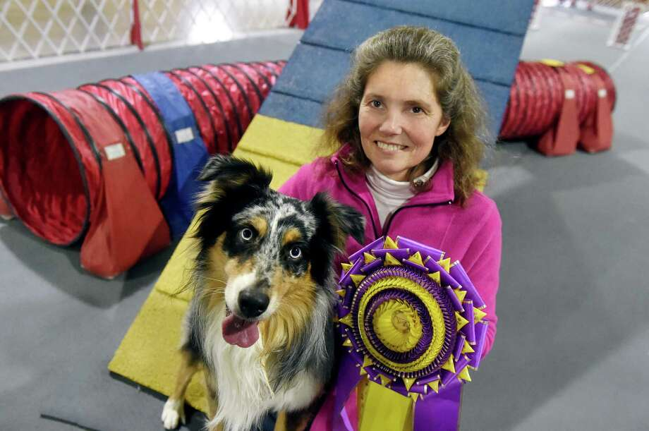 Wendy Cerilli and her agility champion Holster, an Australian shepherd, on Wednesday, Feb. 17, 2016, at their home in Greenwich, N.Y. Holster, won overall champion in the Westminster Master Agility Championship. (Cindy Schultz / Times Union) Photo: Cindy Schultz / Albany Times Union