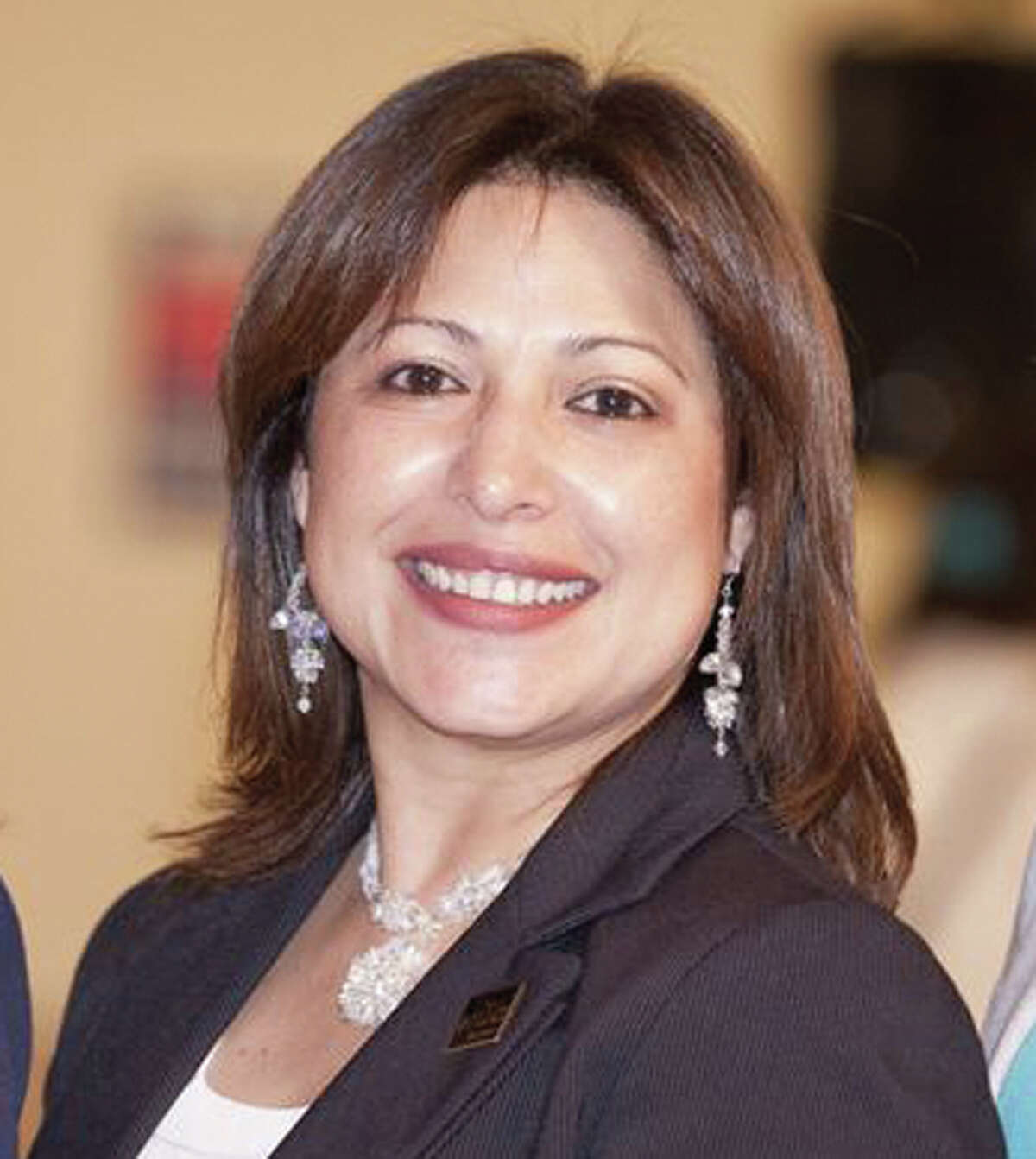 Mary Ann Perez district 144 2012 Voters Guide