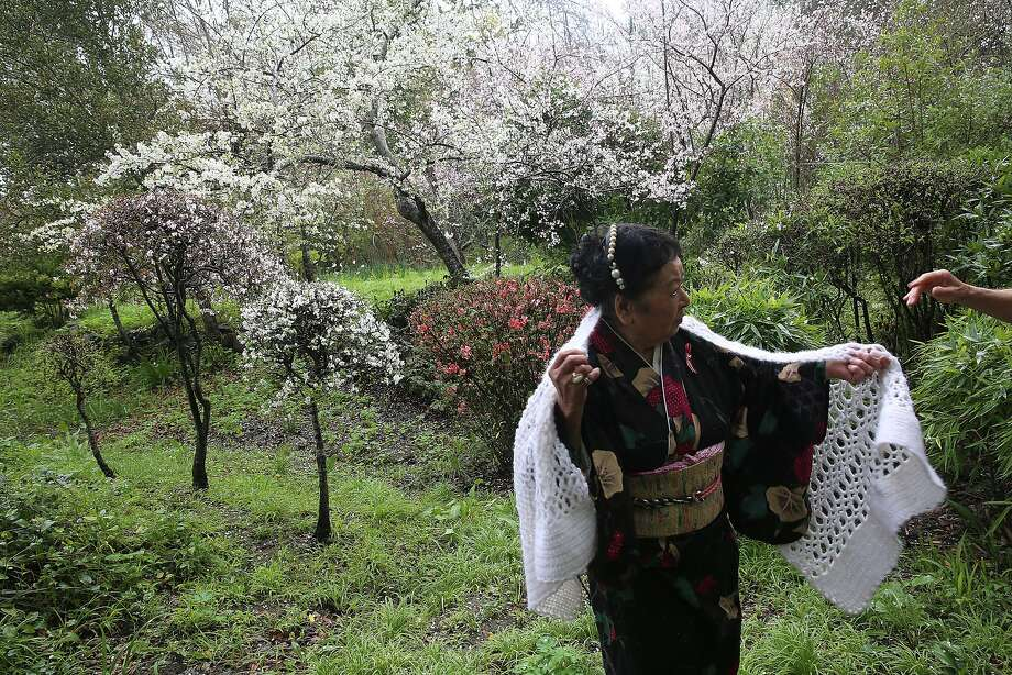 Maria Miyagi Bartuff, 85 years old, a survivor of the sinking of the Japanese freighter tsushima maru in 1944 when she was 13 years old shows her garden with her husband in San Anselmo, California, on Friday, February 19, 2016.  The ship carried over 700 school children and was torpedoed by a U.S. submarine. Photo: Liz Hafalia, San Francisco Chronicle