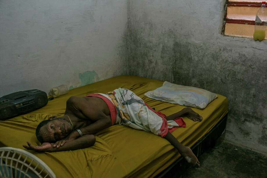 dengue outbreak essay