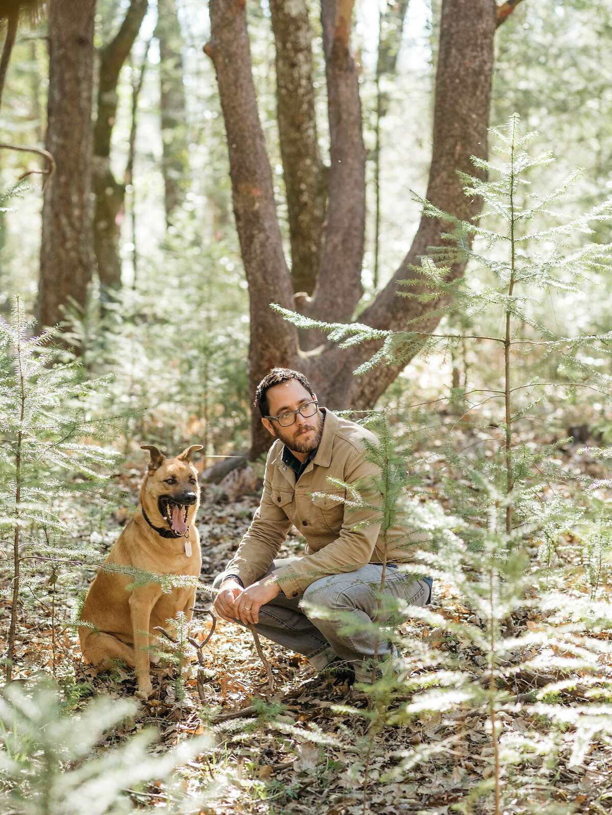 Christopher Kostow forages for mushrooms with his dog Charlie in Los Posadas, Calif., February 8, 2016.