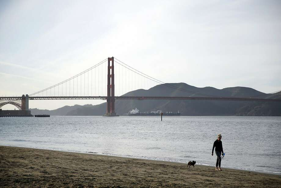 Emily Paxhia walks Sprout along the shore near Crissy Field in San Francisco, Calif., on Monday, February 22, 2016. Photo: Scott Strazzante, The Chronicle