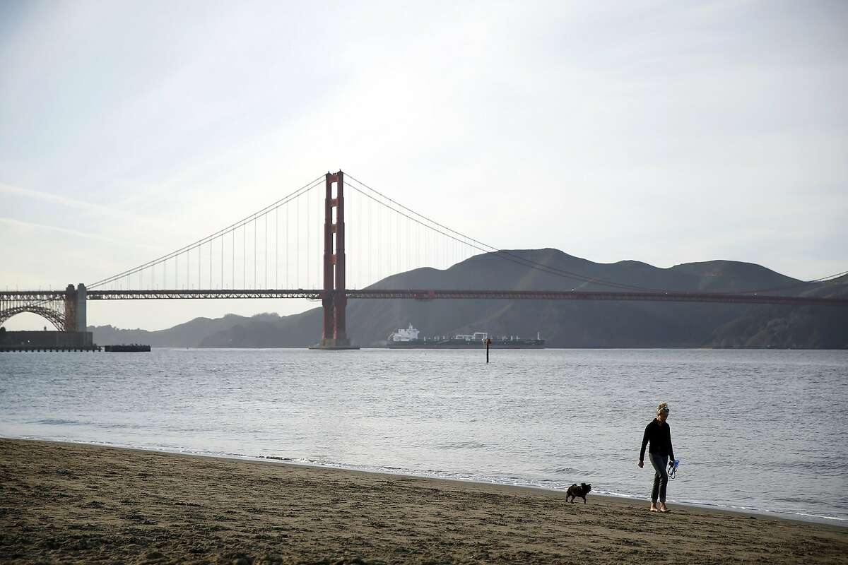 Emily Paxhia walks Sprout along the shore near Crissy Field in San Francisco, Calif., on Monday, February 22, 2016.