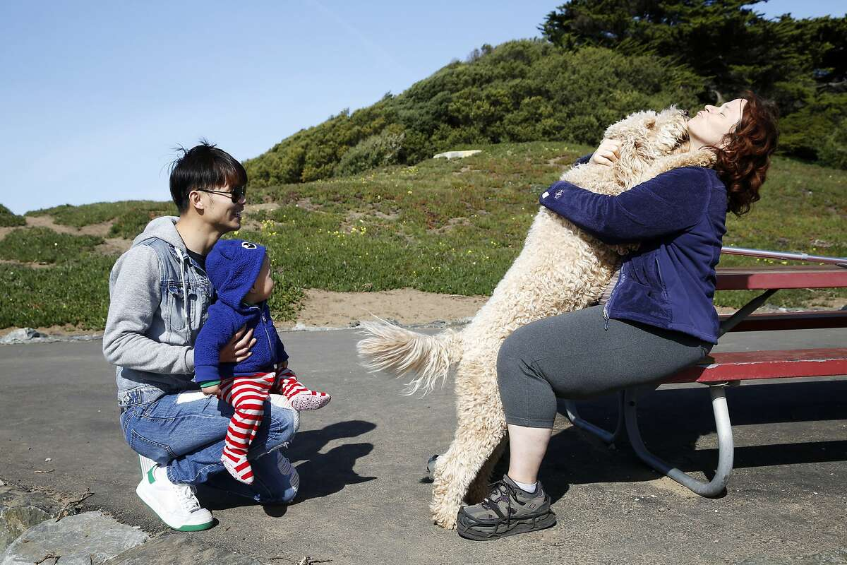 Danny Yang holds his 1-year-old son Marco (left) as Ruby the Golden Doodle jumps up on her owner Elisa Legon at Fort Funston in San Francisco, California, on Tuesday, Feb. 23, 2016.
