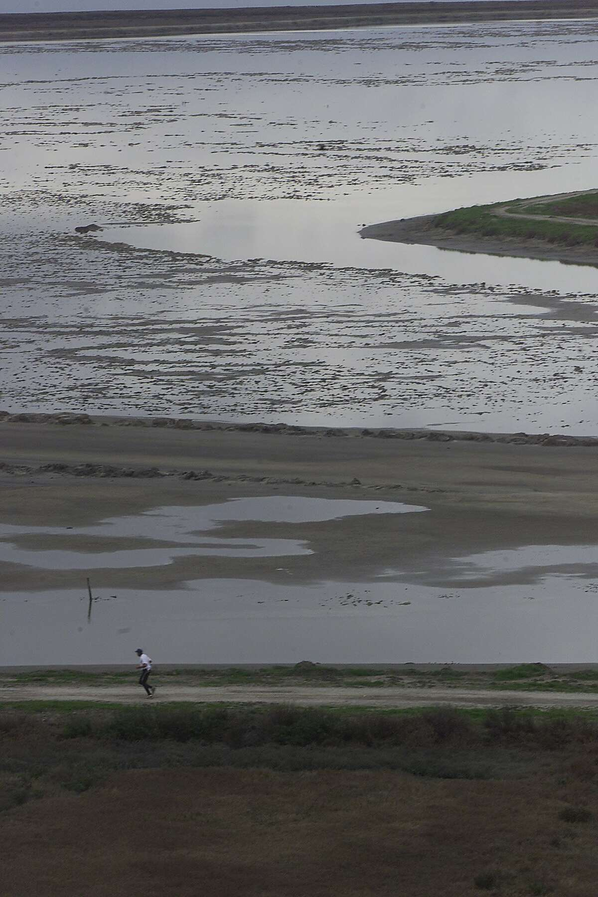NORTON5-C-21JAN02-MT-LS -----A jogger runs along a path in the Don Edwards San Francisco Bay Wildlife Refuge. Interior Secretary Gale Norton tours the Don Edwards San Francisco Bay Wildlife Refuge at Number 1, Marshlands Road in Fremont and is expected to announce funding increase for the national wildlife refuge system. Photo by Lea Suzuki/SAN FRANCISCO CHRONICLE