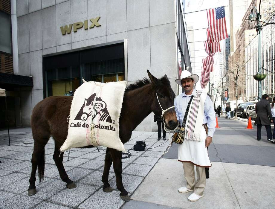 A man dressed as Juan Valdez and his mule Conchita poses as they hand out Colombian coffee in New York. The fictional character is the international symbol of Colombian coffee. 