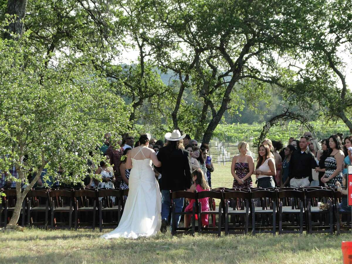 A bride is escorted down the aisle for her wedding on the edge of the vineyard at Duchman Family Winery. The scenic grounds are perfect for a family picnic.
