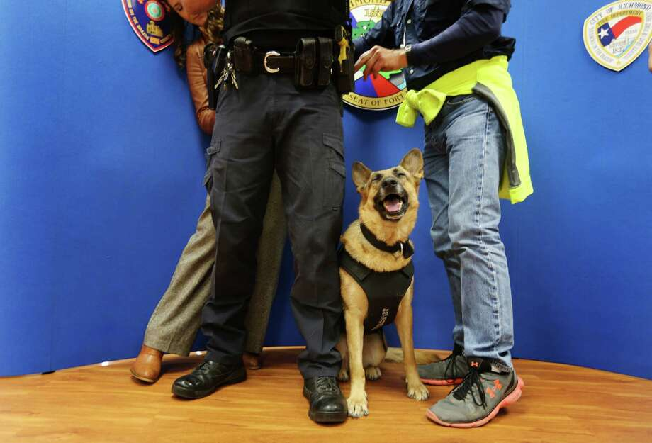 """K9 Officer, Jackie, seemed happy with all of the attention after she received  a bullet/stab proof vest from an anonymous donor Wednesday, Feb. 24, 2016, in Richmond.  Officer Todd Ganey was being prepared for interviews after the press conference.  Richmond Police Department's K9 Jackie has received a bullet and stab protective vest thanks to a charitable donation from non-profit organization Vested Interest in K9s, Inc. The vest was sponsored by an Anonymous Sponsor and is embroidered with the sentiment """"Bless and protect this K9. Thank you for your service."""" Photo: Steve Gonzales, Houston Chronicle / © 2016 Houston Chronicle"""