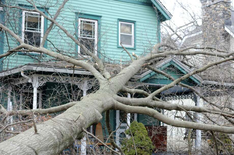 A  large tree fell on the house at 400 West Avenue in Darien, Conn. on Thursday, Feb. 25, 2016. A powerful late evening storm tore through the region on Wednesday, toppling trees and knocking out power to thousands in the state. Photo: Cathy Zuraw, Hearst Connecticut Media / Connecticut Post