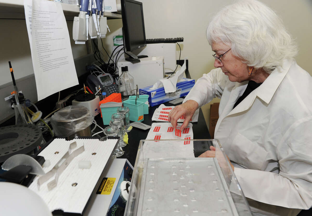 Research scientist Laura Kramer handles some stained slides at NYS Health Department's Griffin Laboratory on State Farm Road Thursday, Jan.31, 2013, in Slingerlands, N.Y. (Lori Van Buren / Times Union archive)