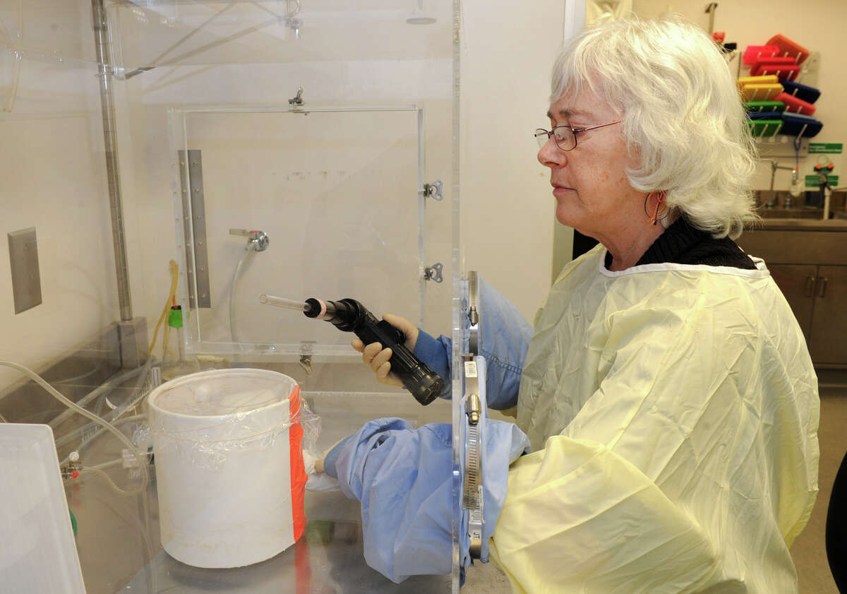 Research scientist Laura Kramer works with live mosquitos in the insectary at NYS Health Department's Griffin Laboratory on State Farm Road Thursday, Jan.31, 2013, in Slingerlands, N.Y. (Lori Van Buren / Times Union archive)