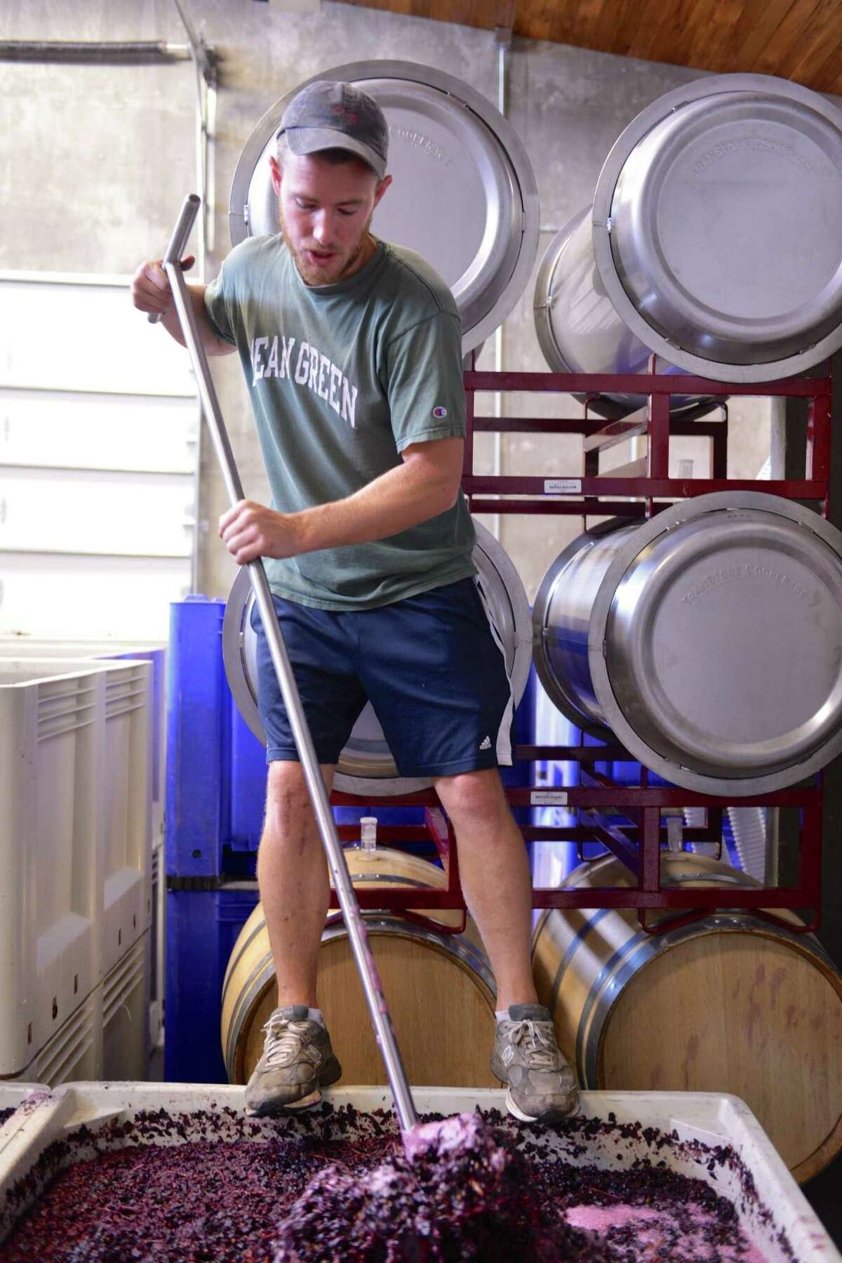 Doug Lewis of Lewis Wines punches down grapes that are fermenting at his winery in Johnson City.