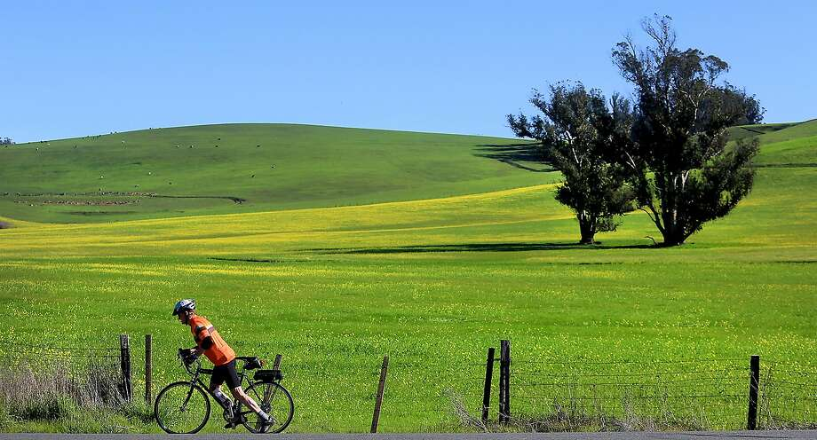 Don Coursey of Ukiah enjoys a bike ride in west Sonoma County on an unseasonably warm (and dry) day during El Niño's hiatus this month. Photo: Kent Porter, Associated Press