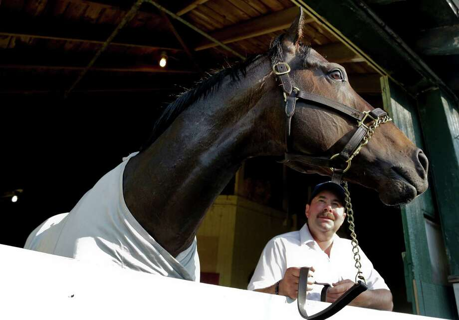 Ride On Curlin, trained by Billy Gowan, finished second in the 2014 Preakness Stakes and competes in Saturday's Maxxam Gold Cup at Sam Houston Race Park. Photo: Julie Jacobson, STF / AP
