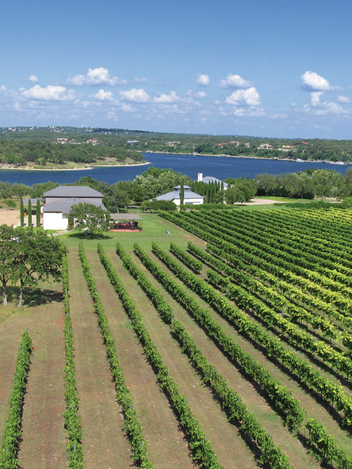 Stone House Vineyard is perched above Lake Austin.