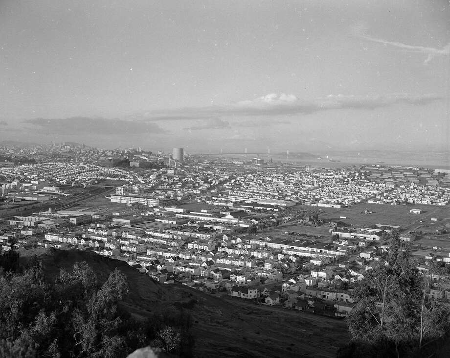 View from Bayview Heights in the 1950s. Looking down at Bayview which still had farmland. Photo: Bob Campbell, The Chronicle