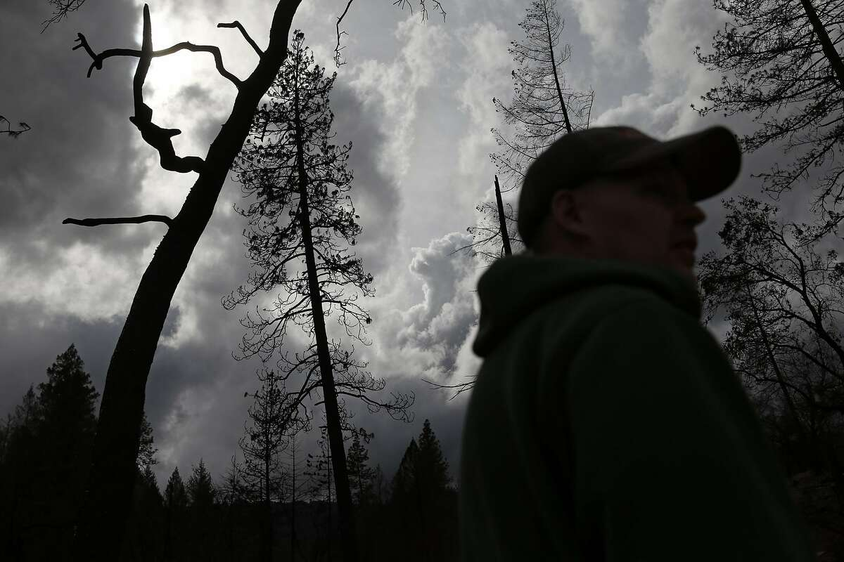 Daniel Laine pauses while working on his family's property in the aftermath of the Valley Fire in Anderson Springs, Calif., on Wednesday, March 2, 2016.
