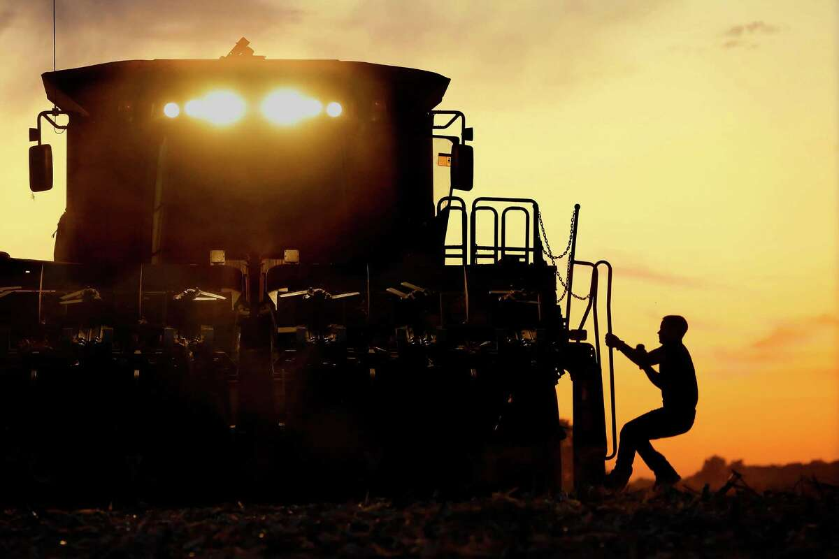 Acorn farmer, climbing onto his combine, is silhouetted against the setting sun while harvesting the 2014 corn crop. Midwestern states largely oppose the federal government's Chesapeake Bay cleanup plan due to fears the government will impose similar regulations for the Mississippi river basin.